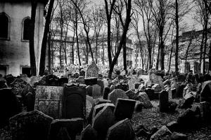 Las ratas del cementerio